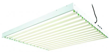 12 Tube Commercial T5 Fluorescent System