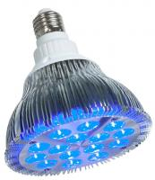 powerPAR™ Blue LED Lamp