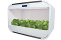 hydroponic growth chamber